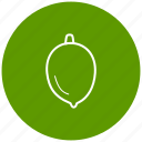component, food, fruit, ingredient, lime icon