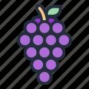 grape, food, fruit, juicy, tropical fruit, grapes