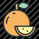 orange, food, fruit, juicy, tropical fruit