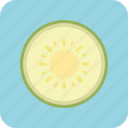 agriculture, cantaloupe, cuisine, drink, food, fruit, nature icon