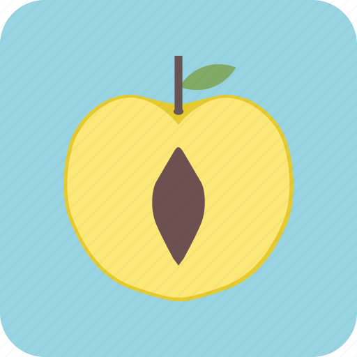 agriculture, cuisine, drink, food, fruit, nature, peach icon