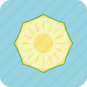 agriculture, cuisine, drink, food, fruit, nature, pineapple icon