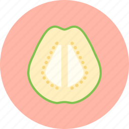 food, fruit, guava, plant, seed icon