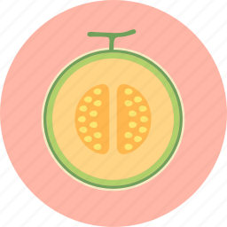 cantaloupe, food, fruit, honeydew melon, plant, seed icon