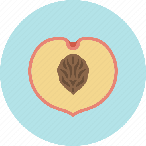 food, fruit, peach, plant, stone, sweet icon