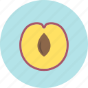 food, fruit, plant, plum, stone, sweet icon