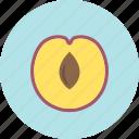 food, fruit, plant, plum, stone, sweet icon