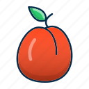 apricot, food, fruit, healthy, peach icon
