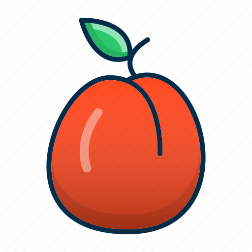 Apricot, food, fruit, healthy, peach icon - Download on Iconfinder