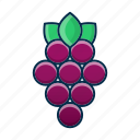 dessert, food, fruit, grapes, summer, tasty icon