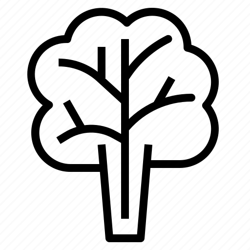 leaf, lettuce, salad icon