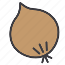 food, fruit, healthy, onion, vegetable icon