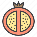 food, fruit, healthy, pomegranate, vegetable icon