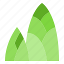 bamboo, food, fruit, healthy, shoot, vegetable