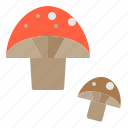 food, fruit, healthy, mushroom, vegetable icon
