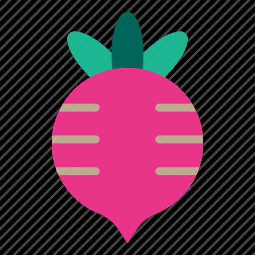 Food, fruit, healthy, radish, vegetable icon - Download on Iconfinder