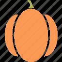 food, pumkin, vegetable, vegetables icon