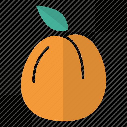 apricot, food, fruit icon