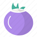 food, garlic, onion, vegetable icon