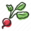 field, food, garden, healthy, radish, vegetable icon