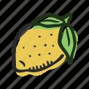 food, fruit, healthy, lemon, sour, tropical