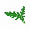 arugula, leaf, plant, raw vegan, vegetable icon