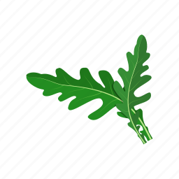 arugula, leaf, plant, raw vegan, vegetable icon