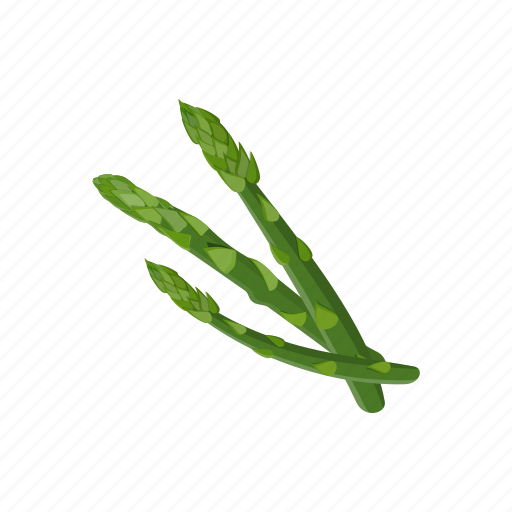 asparagus, food, plant, raw vegan, vegetable icon