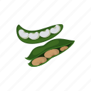 beans, food, raw vegan, seed, vegetable icon