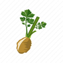 celery, nutrient, root, stick, vegetable icon