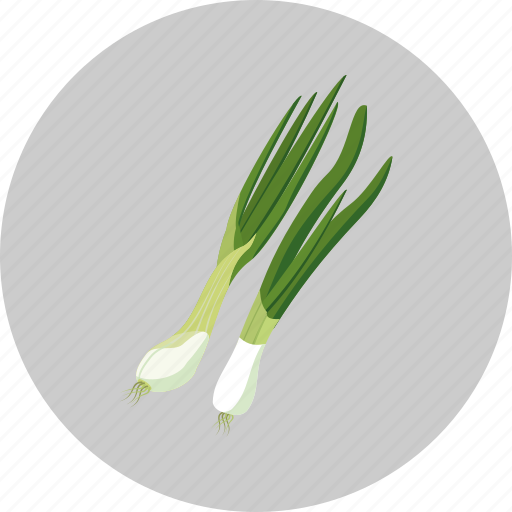 green onion, leaf, plant, vegetable icon
