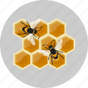 honeycombs, sweet icon