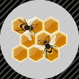honeycombs, sweet icon