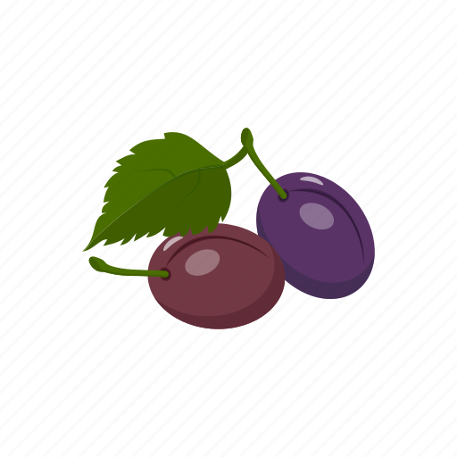 fruit, plums icon