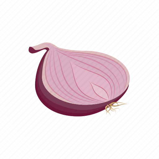 onion, red onion, vegetable icon