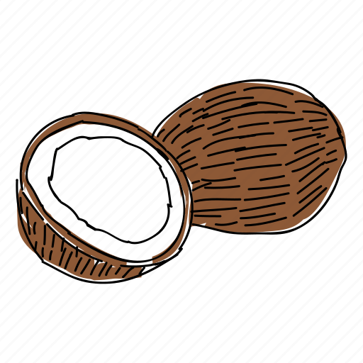 coconut, coconut milk, food, fruit, hand drawn, tropical, tropical fruit icon