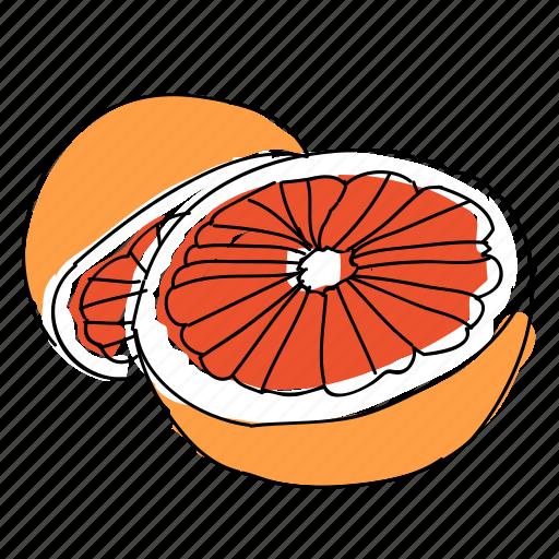 citrus, food, fruit, grapefruit, hand drawn, juice, lotion icon