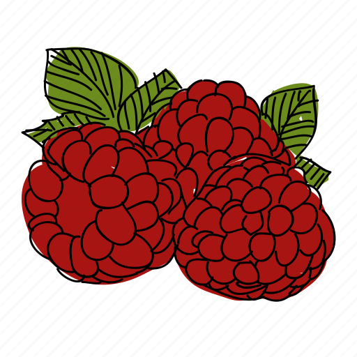 food, fruit, hand drawn, produce, raspberry, reastaurant, red icon