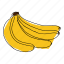 banana, banana bunch, bananas, food, fruit, tropical, yellow banana icon