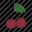 black cherries, cherries, cherry, cherry tree, food, fruit, produce
