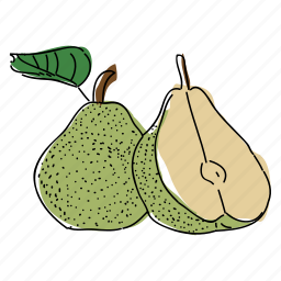 food, fruit, hand drawn, illustration, pear, pears, produce icon