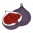 fig, figs, food, fruit, hand drawn, purple, restaurant icon
