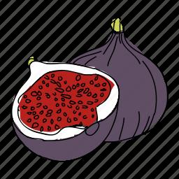 fig, figs, food, fruit, hand drawn, purple, restaurant icon