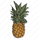 food, fruit, hand drawn, illustration, pineapple, produce, tropical fruit icon