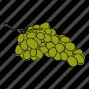 food, fruit, grape, grapes, green grapes, produce