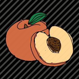 farm, food, fruit, hand drawn, orange, peach, peach pit icon