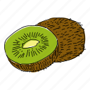 citrus, eat, food, fruit, hand drawn, kiwi, restaurant icon