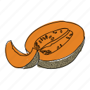 cantaloupe, eat, food, fruit, hand drawn, melon, orange icon