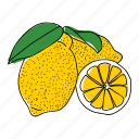 citrus, food, fruit, hand drawn, illustration, lemon, yellow icon