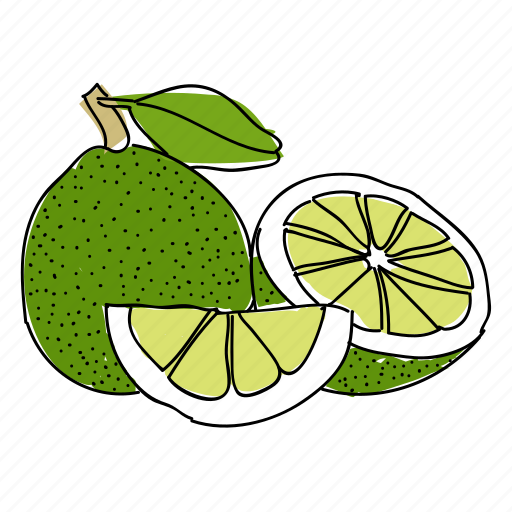 citrus, food, fruit, green, hand drawn, lime, limes icon